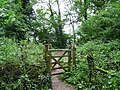 Entrance to Merrivale Wood - geograph.org.uk - 954922.jpg