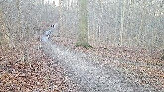 Ermelunden, Denmark - Path
