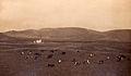 Ermida de Nossa Senhora do Mato, Cinco Picos, ilha Terceira, Arquivo de Villa Maria, Angra do Heroísmo, ilha Terceira, Açores.jpg