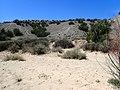 Espinaso Ridge.jpg