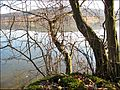 Etang des Forges - Belfort (Pond of Forges - Belfort).jpg