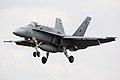 F18 - RIAT 2009 (4005212267).jpg