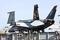 F18 Hornet - USS Theodore Roosevelt - Stokes Bay April 2009 (3424046673).jpg