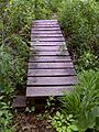 FLT M17 10.1 mi - Puncheon at Smiley Rd, 8' long, 2x6x24 in deck, 6x6 sills , 2.5' to drainage - panoramio.jpg