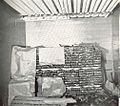 FMIB 38941 Fish Storage Room of Ammonia Plant at Cincinnati, Ohio, Containing Sturgeon, Lake Herring, Etc.jpeg