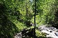 FR64 Gorges de Kakouetta74.JPG