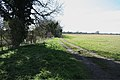 Farm track from Shelford to Hauxton - geograph.org.uk - 744339.jpg