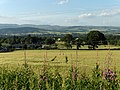 Farmland east of Muthill - geograph.org.uk - 204557.jpg