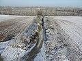 Feld geteilt durch Vogelschutzhecke - panoramio.jpg