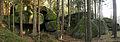 Felsgruppe Gugelhupfstein bei HeidenreichsteinWestseite NÖ-Naturdenkmal GD-077.jpg