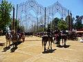 FeriaDelCaballo-Jerez-p1020408.jpg