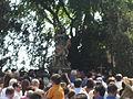 Festa di San Rocco.JPG