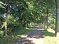 Fietspad langs het kanaal (Dukenburg).jpg