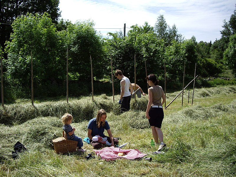 File:Fika in the grass.jpg