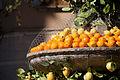 Fira de la Taronja i la Llimona (4675955097).jpg