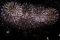 Fireworks in Edogawa, Tokyo; August 2008 (11).jpg