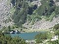 Fish Banderishko lake, Pirin National Park 02.JPG