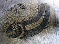 Fish Mosaic in the Bath House at Great Witcombe Villa, Gloucs.jpg