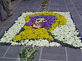 Fiumalbo infiorata 2010 Gesù.JPG