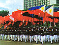 Flag100b.jpg