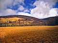 Flickr - Nicholas T - Hillside.jpg