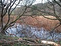 Flooded sheuch besides the bypassed section of the A4086 - geograph.org.uk - 1595150.jpg