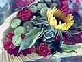 Flower - panoramio - Hosein(hpjoojoo) (1).jpg