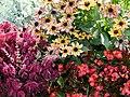 Flowers mix.jpg