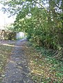 Footpath and leaves - geograph.org.uk - 1049412.jpg