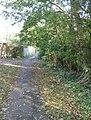Footpath and leaves - geograph.org.uk - 1049412.jpg