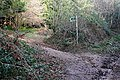 Footpath into Hayes Wood - geograph.org.uk - 1140557.jpg
