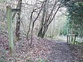 Footpath to Druids Grove - geograph.org.uk - 358084.jpg