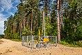 Forest in Minsk (June 2020) 8.jpg