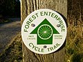 Forestry Enterprise actively encourage cycling in Dalby Forest - geograph.org.uk - 290422.jpg