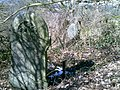Forgotten graves^ St. Lawrence's Church, North Wingfield - panoramio (4).jpg