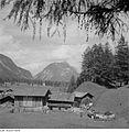 Fotothek df ps 0004123 Landschaften ^ Hügellandschaften - Gebirgslandschaften.jpg