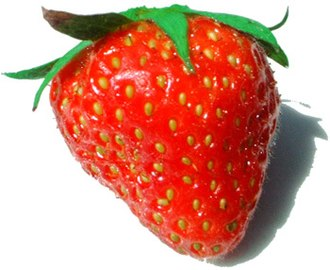 Accessory fruit - A strawberry fruit: the 'seeds' are achenes, each one derived from a pistil of the flower.