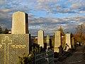 Friedhof Hietzing Grabreihe.jpg