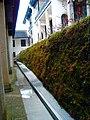 Fuyan Monastery - panoramio - A J Butler (7).jpg