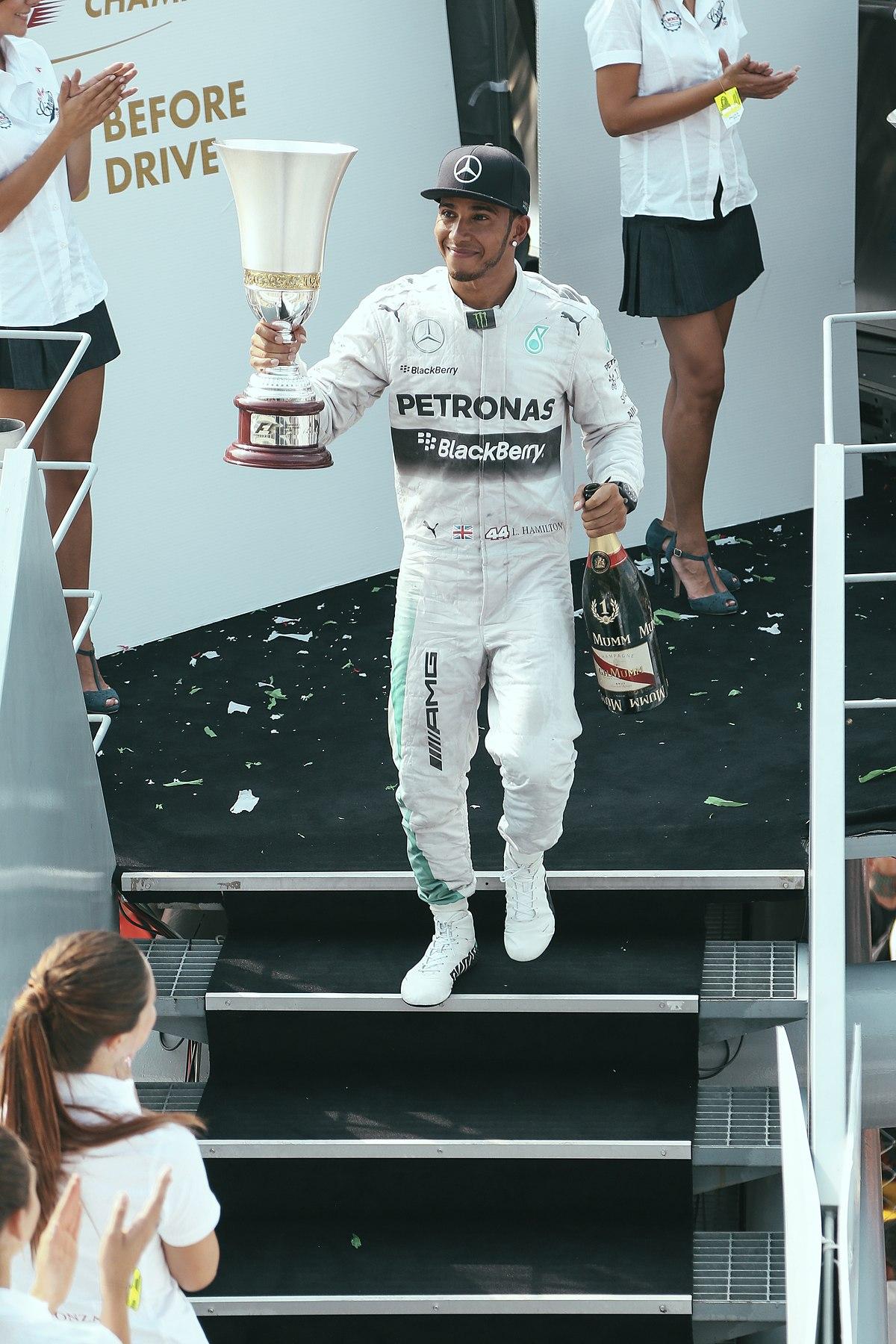 Formel 1 Sieger