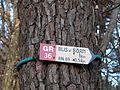 GR 36 Blis-et-Born direction Blis-et-Born (1).JPG