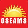GSEAMS.jpg