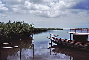 Geography of the Gambia - Image: Gambia 027 from KG