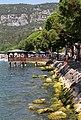 Garda, Lungo Lago Regina Adelaide - panoramio.jpg