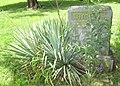 Garden or Grave - panoramio.jpg