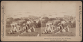 General view, Naval Parade, New York Bay, from Robert N. Dennis collection of stereoscopic views.png