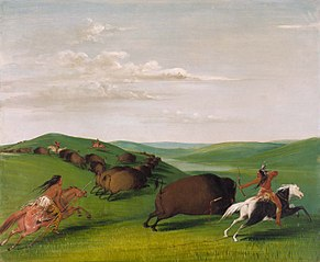 Buffalo Chase with Bows and Lances