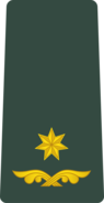 Georgia Army OF-4