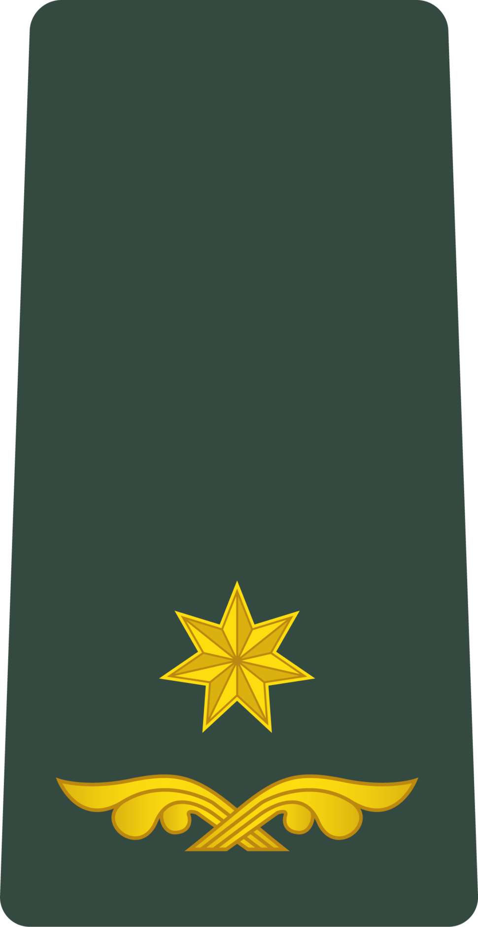 Georgia Army OF-4