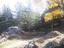 Rocce di affioramento presso il Monte Volpintesta